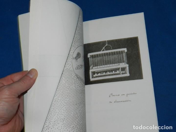 Arte: (M) GRUPO TEXTO POETIC 1979 DIRIGIDA POR ANGEL COSMOS EDITO EUSKAL BIDEA, ILUSTRADO - Foto 5 - 205690706
