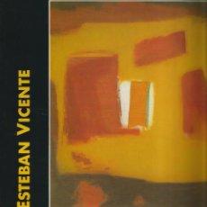 Arte: ESTEBAN VICENTE - IBERCAJA - ZARAGOZA 1991. Lote 210642306