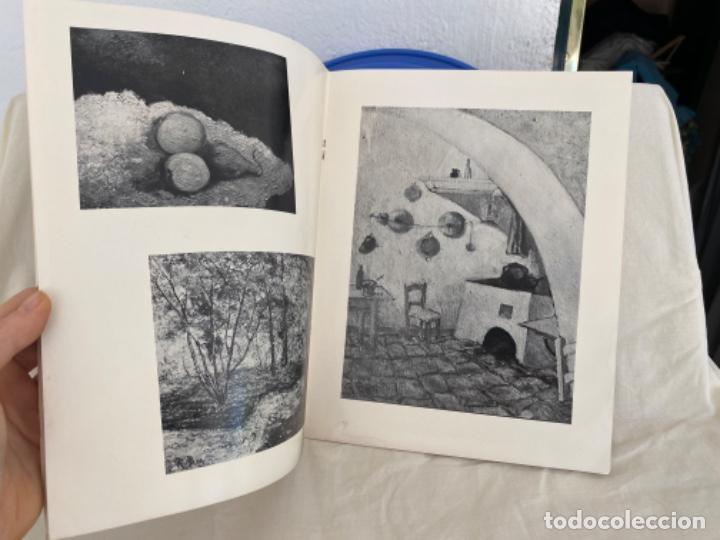 Arte: RAFAEL BOTÍ catalogo de arte GALERIA DE ARTE LAZARO 1972 - Foto 5 - 213643073