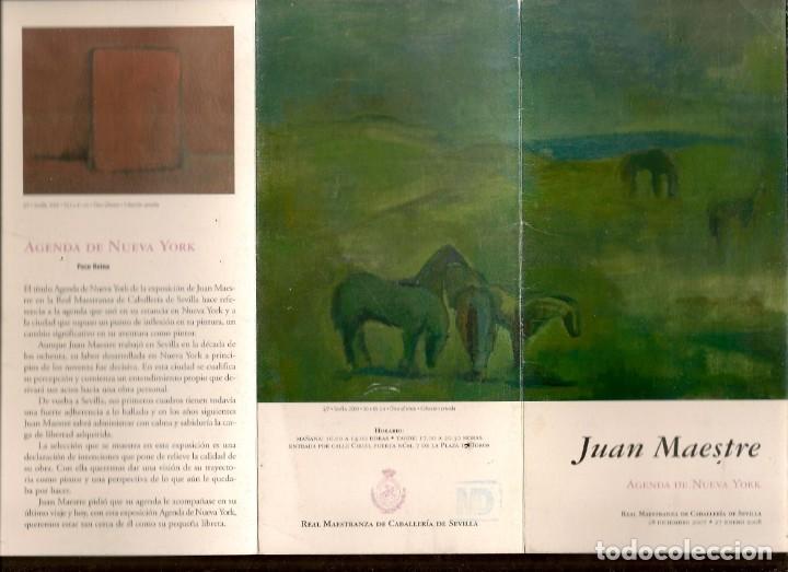 TRIPTICO: JUAN MESTRE. AGENDA DE NUEVA YORK. REAL MAESTRANZA DE CABALLERIA. SEVILLA, 2007.(B/A58.1) (Arte - Catálogos)