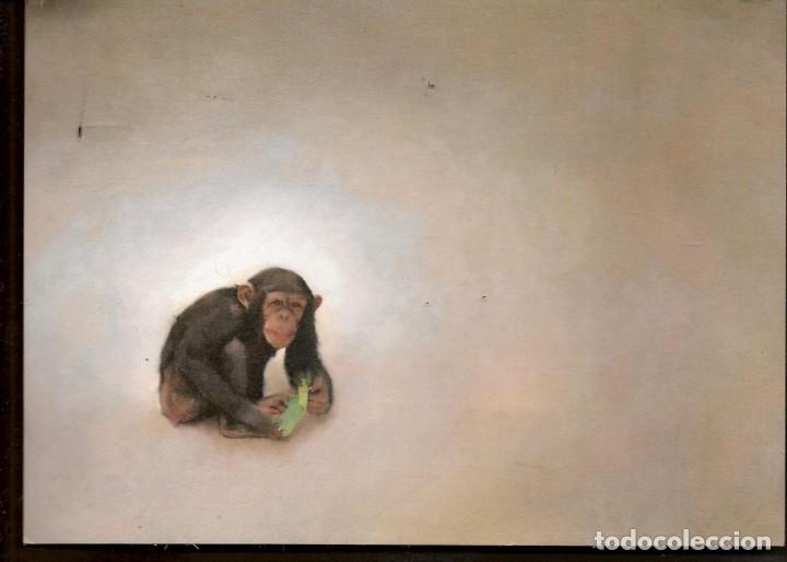 TARJETA: INVITACIÓN INAUGURACIÓN EXPOSICIÓN: CARLOS TÁRDEZ. SEVILLA, 2012. (B/A58.1) (Arte - Catálogos)