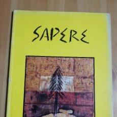 Arte: HORACIO SAPERE. PINTURAS (MUSEO DE ARTE MODERNO DE BUENOS AIRES, MAYO - JUNIO 1995). Lote 223411272