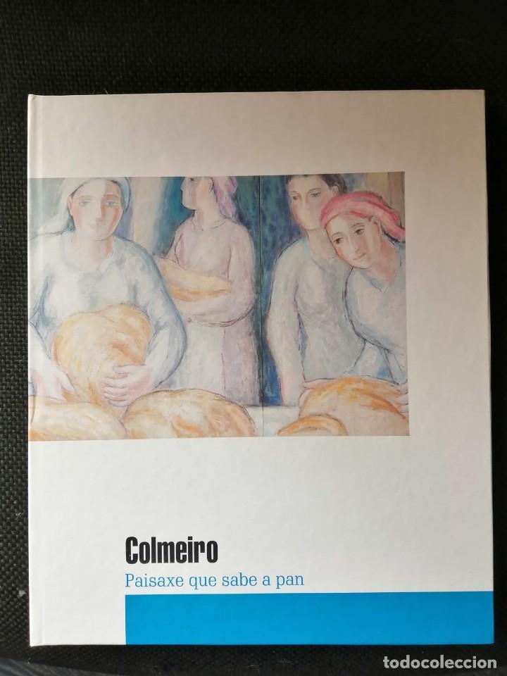 COLMEIRO PAISAXE QUE SABE A PAN ,CATALOGO EXPOSICION REALIZADA CIRCULO DE LAS ARTES LUGO (Arte - Catálogos)