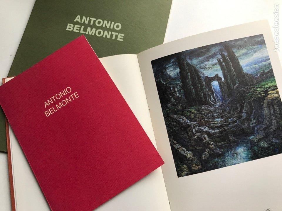 Arte: Envío 8€. 3 Catálogos ANTONIO BELMONTE. Miden 24x27cm, 21x16cm y17x12cm. Anos 91 y 92 - Foto 3 - 240404065