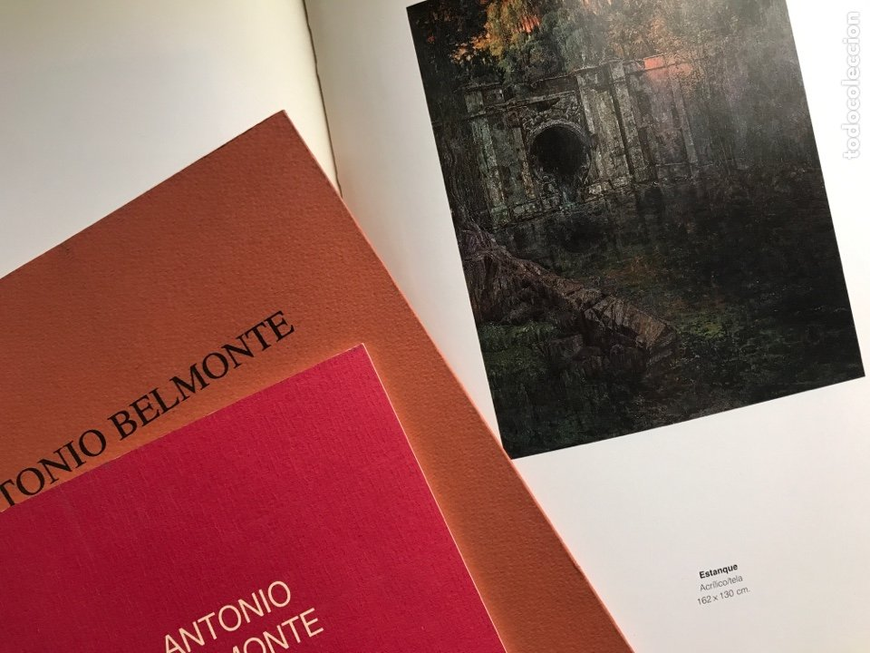 Arte: Envío 8€. 3 Catálogos ANTONIO BELMONTE. Miden 24x27cm, 21x16cm y17x12cm. Anos 91 y 92 - Foto 4 - 240404065