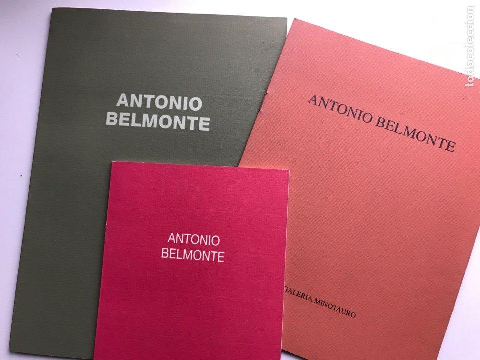 ENVÍO 8€. 3 CATÁLOGOS ANTONIO BELMONTE. MIDEN 24X27CM, 21X16CM Y17X12CM. ANOS 91 Y 92 (Arte - Catálogos)