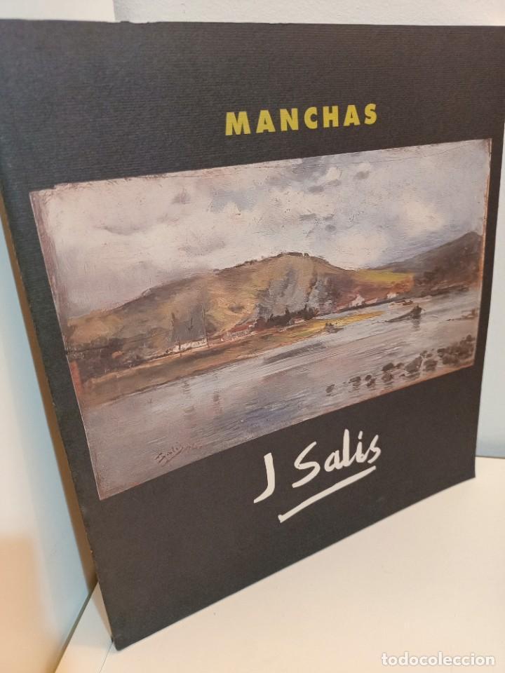 JOSE SALIS, MANCHAS, PINTURA / PAINTING, EDITORIAL ALBERDANIA, 2003 (Arte - Catálogos)