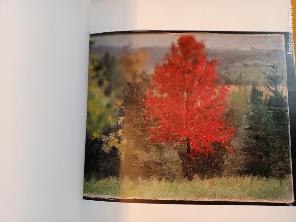 Arte: JOSE SALIS, MANCHAS, PINTURA / PAINTING, EDITORIAL ALBERDANIA, 2003 - Foto 3 - 243593785