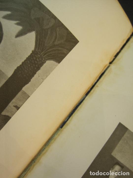 Arte: M. VILADRICH-LA OBRA DEL ARTISTA EN 84 GRABADOS-CATALOGO DE ARTE-VER FOTOS-(V-22.548) - Foto 59 - 245254525