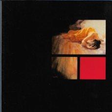 Arte: ROBERTO LIANG. CATALOGO EXPOSICION GALERIA KREISLER. MAYO 1992.. Lote 252143365