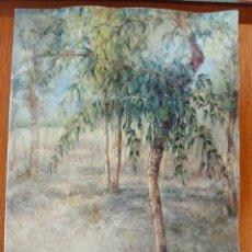 Arte: CATÁLOGO DE EXPOSICIÓN DE JAVIER RUEDA, 2003- CASTILLO DE GUADALEST. Lote 254069705