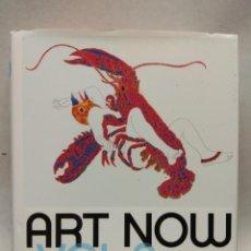 Arte: ART NOW. VOL 2. LA NUEVA GUÍA CON 81 ARTISTAS CONTEMPORÁNEOS INTERNACIONALES. TASCHEN.. Lote 257746160