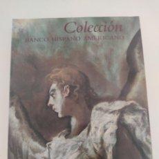 Arte: COLECCIÓN. FUNDACIÓN BANCO HISPANO AMERICANO. 1990. 29 X 23 CMS 486 PÁGINAS. Lote 271578053