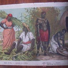 Arte: AÑO 1890. LITOGRAFÍA COLOR. NEGROS DE GUINEA. CAFRES. ÁFRICA. ANTROPOLOGÍA. ETNOLOGÍA.. Lote 36156092