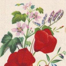 Arte: UXG HERMOSA CROMOLITOGRAFIA GRIEGA DE FLORES 1945 IDEAL PARA ENMARCAR BOTANICA 15X20 CMS . Lote 38350264