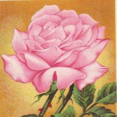 Arte: UXG HERMOSA CROMOLITOGRAFIA GRIEGA DE FLOR ROSA 1945 IDEAL PARA ENMARCAR BOTANICA 15X20 CMS . Lote 38350401