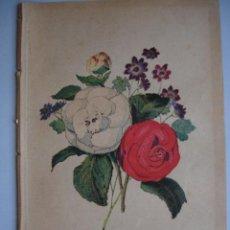 Arte: CAMELIA.CINERARIA.FLORES.BOTANICA.AÑO 1870.17X11. Lote 43856034