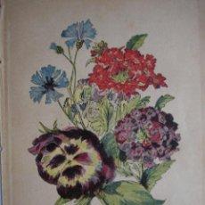 Arte: PENSAMIENTO.VERBENA.ACIANO.FLORES.BOTANICA.AÑO 1870.17X11. Lote 43857016