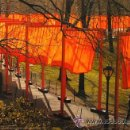 Arte: CHRISTO JAVACHEFF - THE GATES - NEW YORK CENTRAL PARK. Lote 47337271