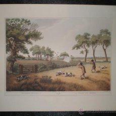 Arte: PARTRIDGE SHOOTING II - LA CHASSE AUX PERDRIX (LA CAZA DE LA PERDIZ II). Lote 190909206