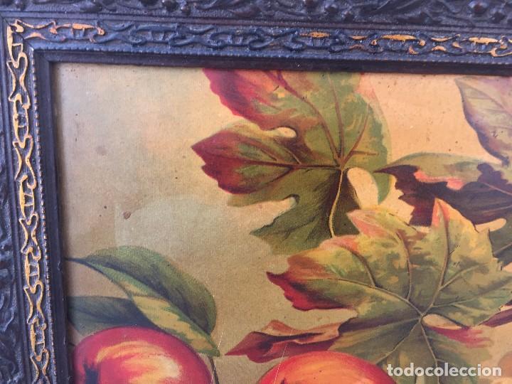 Arte: cromolitografia bodegon frutas melocotones uvas ciruelas manzanas ppio s XX 45x58cms - Foto 2 - 92832090