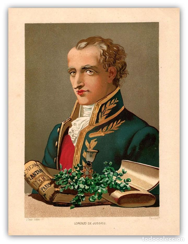 RETRATO JUSSIEU BOTANICO FRANCES SIGLO XVIII-XIX CIENCIAS NATURALES CROMOLITOGRAFIA SIGLO XIX (Arte - Cromolitografía)