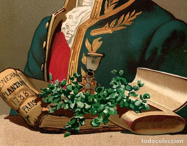 Arte: RETRATO JUSSIEU BOTANICO FRANCES SIGLO XVIII-XIX CIENCIAS NATURALES CROMOLITOGRAFIA SIGLO XIX - Foto 4 - 116470623