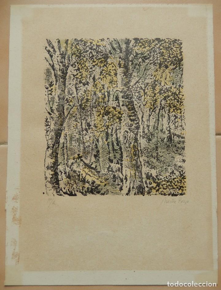 CROMOLITOGRAFIA BOSQUE FIRMADO POZO (Arte - Cromolitografía)
