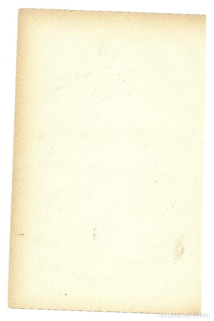 Arte: ZOOLOGÍA MAMÍFEROS MARSUPIALES CROMOLITOGRAFÍA E. HOCHDANZ 1880 - Foto 2 - 120231803