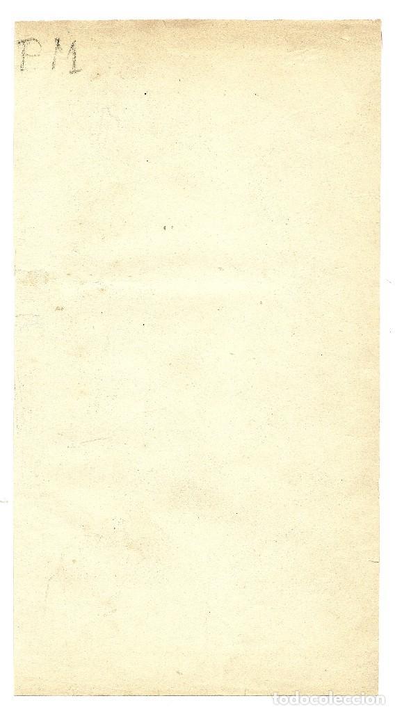Arte: ZOOLOGÍA MAMÍFEROS SIMIOS CROMOLITOGRAFÍA E. HOCHDANZ 1880 - Foto 2 - 120232803