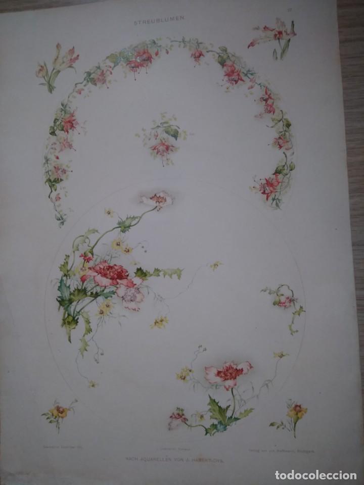 CROMOLITOGRAFIA STREUBLUMEN FLORES HABERT-DYS DEKORATIVE VORBILDER (Arte - Cromolitografía)