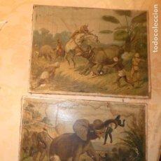 Arte: CROMOLITOGRAFÍAS DE THEODOR BREIDWISER,AUSTRIA .CAZA DEL RINOCERONTE Y DEL ELEFANTE. 33 X 42 CMS.. Lote 163402718