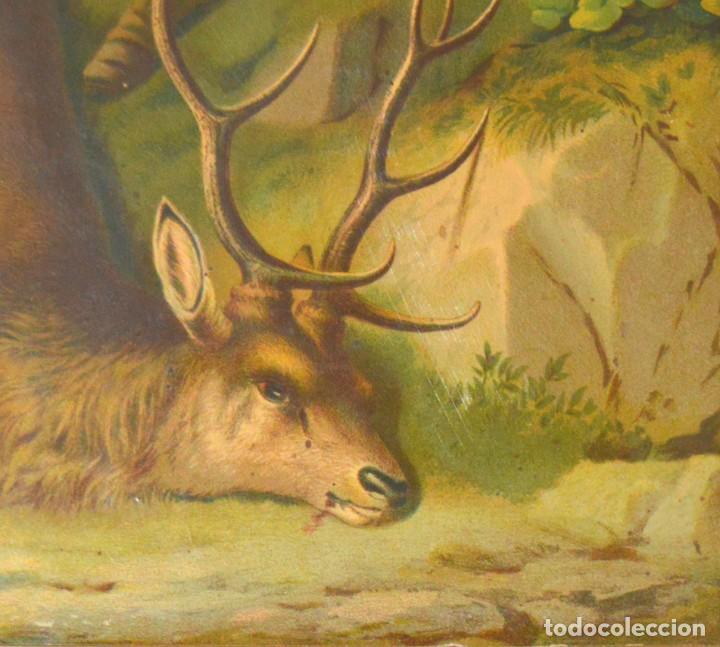 Arte: LA CAZA DEL CIERVO - CROMOLITOGRAFÍA SIGLO XIX - Foto 11 - 189305347