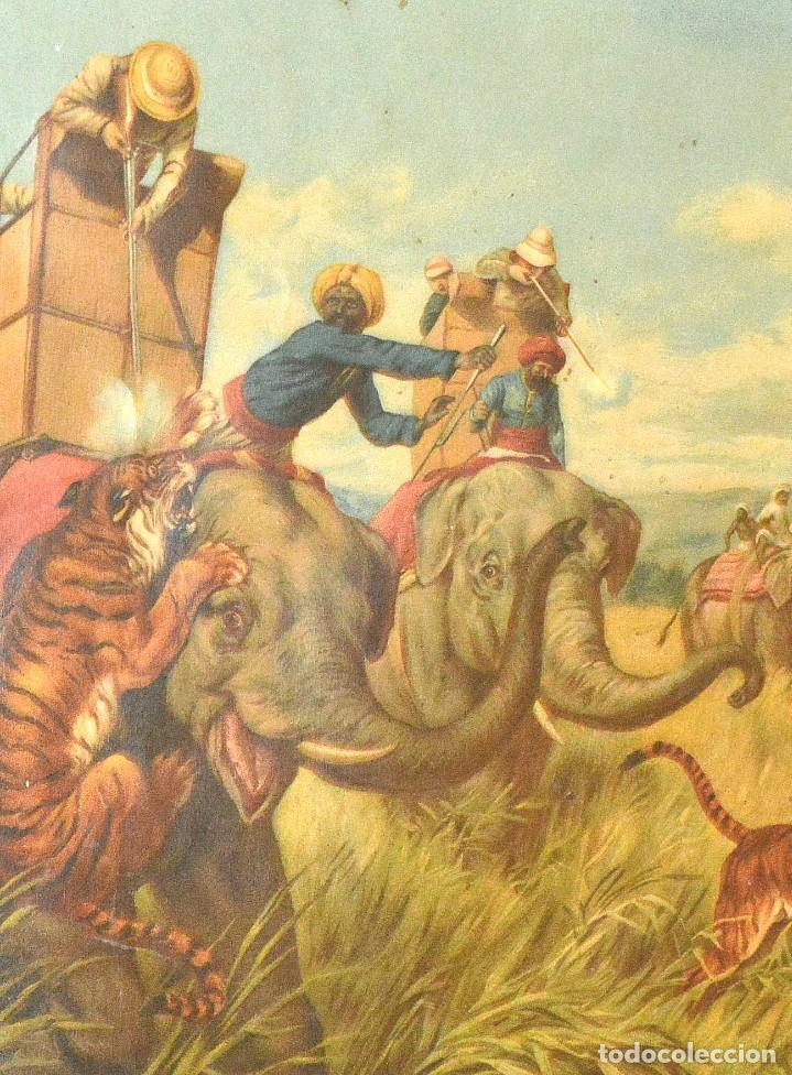 Arte: LA CAZA DEL TIGRE - CROMOLITOGRAFÍA DEL SIGLO XIX - Foto 4 - 189305456