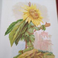 Arte: GIRASOL LIT DE C VERDAGUER J SIMON 1878 ILUSTRACION MODERNISTA MUJER FLOR. Lote 204315808