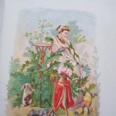 Arte: CICUTA LIT DE C VERDAGUER J SIMON 1878 ILUSTRACION MODERNISTA FLOR MUJER. Lote 204316185