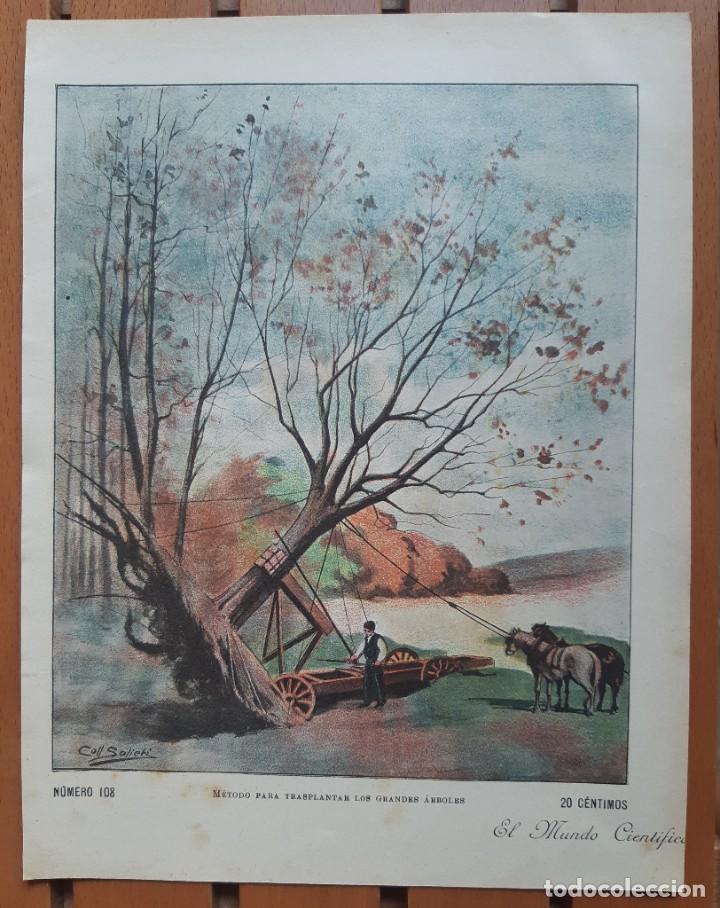 COLECCIÓN DE 4 CROMOLITOGRAFÍAS INDUSTRIALES DEL SIGLO XIX/MÉTODO TRASPLANTE ÁRBOLES- TREN TIBIDABO (Arte - Cromolitografía)