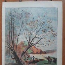 Arte: COLECCIÓN DE 4 CROMOLITOGRAFÍAS INDUSTRIALES DEL SIGLO XIX/MÉTODO TRASPLANTE ÁRBOLES- TREN TIBIDABO. Lote 199870905