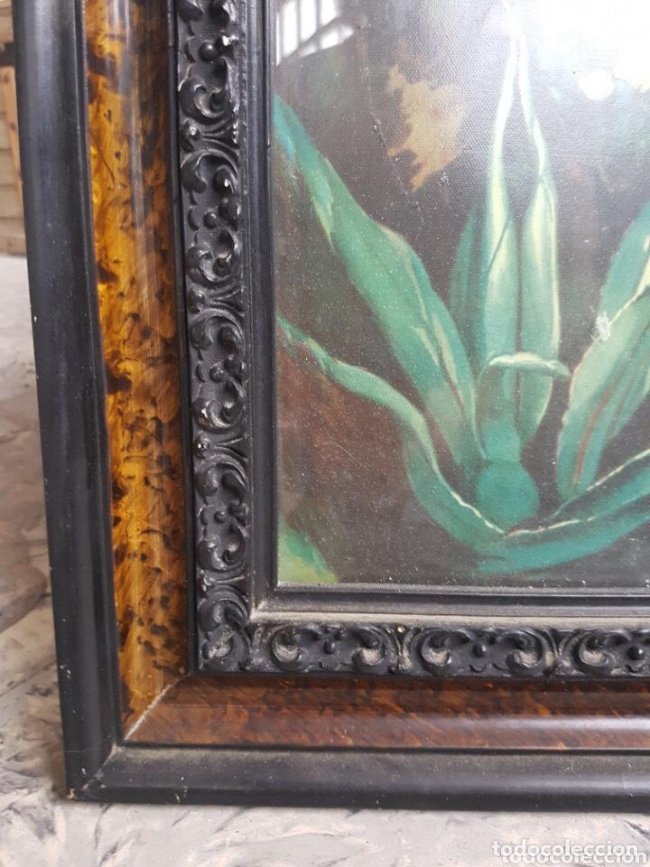 Arte: Antigua y preciosa cromolitografía, con marco de madera de raíz , 98 x 51 cm, año 1908 - Foto 3 - 218885851