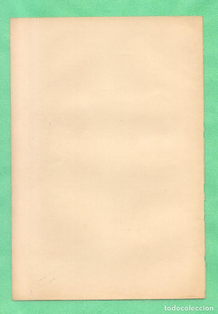 Arte: MEDICINA NATUROPATÍA ENVENENAMIENTO CON MERCURIO CROMOLITOGRAFÍA Bilz Naturheilverfaren 1890 - Foto 2 - 256010515