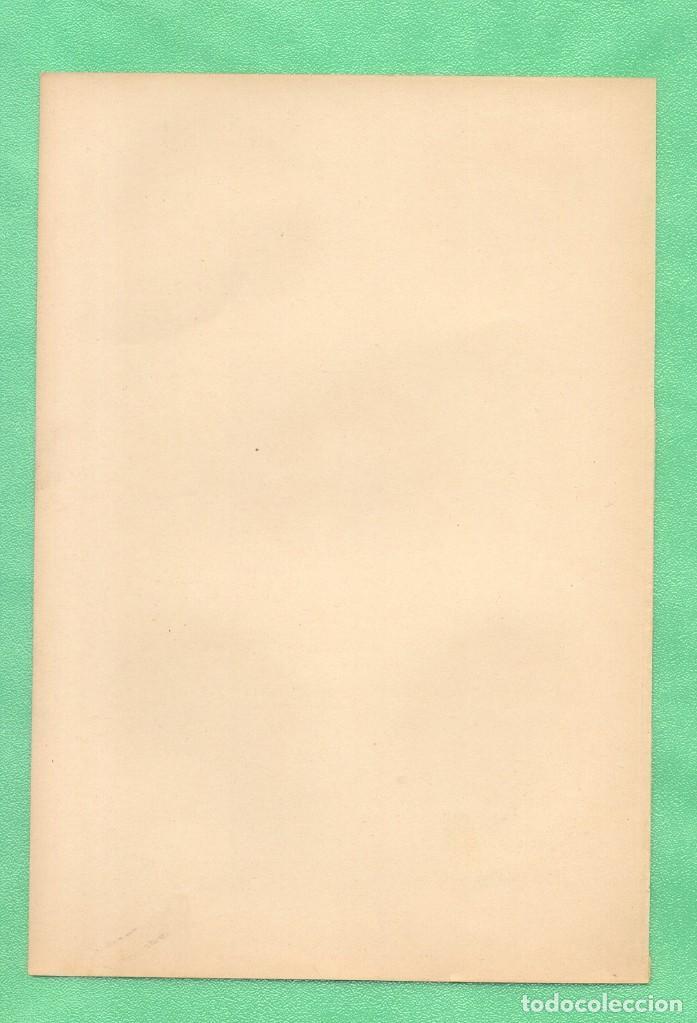 Arte: MEDICINA ANATOMÍA EL CORDÓN UMBILICAL CROMOLITOGRAFÍA DIE FRAU ALS HAUSÁRZTIN A.F.-Dückelmann - Foto 2 - 256016655