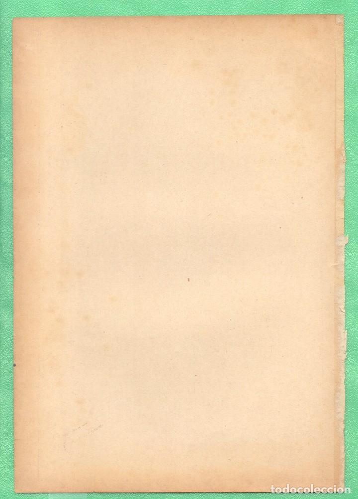 Arte: MEDICINA ANATOMÍA FRACTURA DE CERVICAL Y DE CRÁNEO CROMOLITOGRAFÍA 1900 - Foto 2 - 256025410