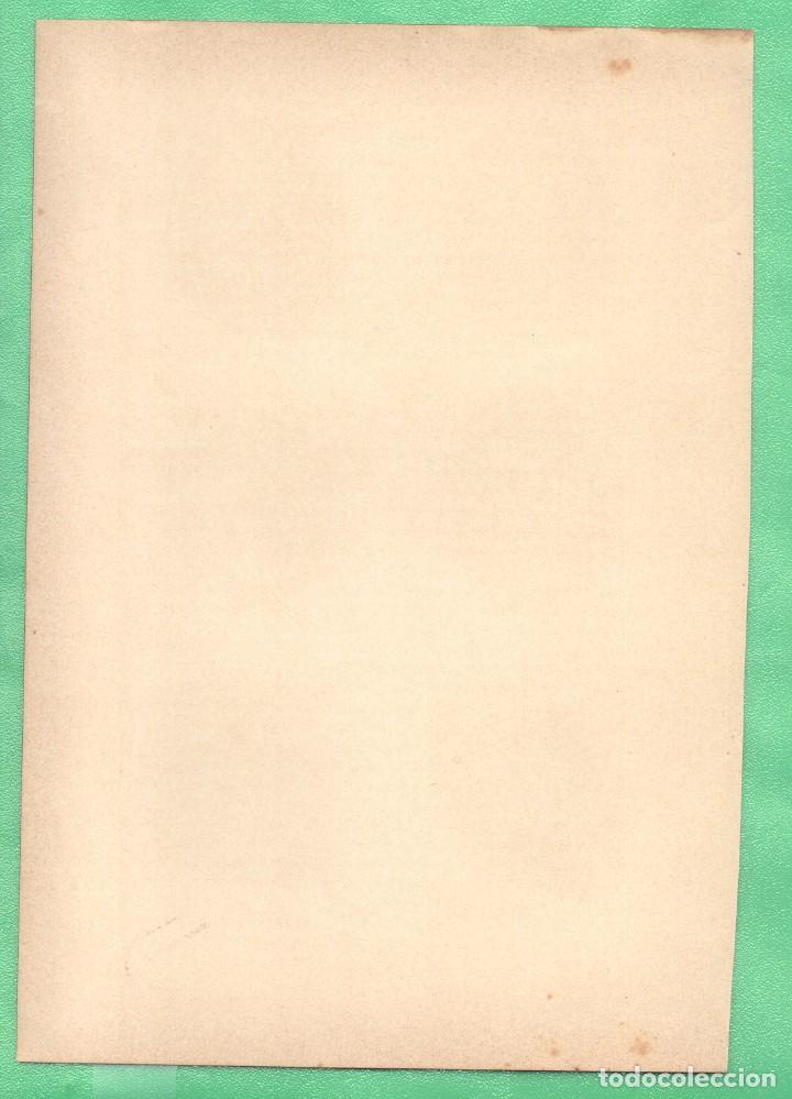 Arte: MEDICINA ANATOMÍA ENFERMEDADES DE LA BOCA Y DE LA FARINGE CROMOLITOGRAFÍA 1905 ANNA FISCHERher, - Foto 2 - 256033635