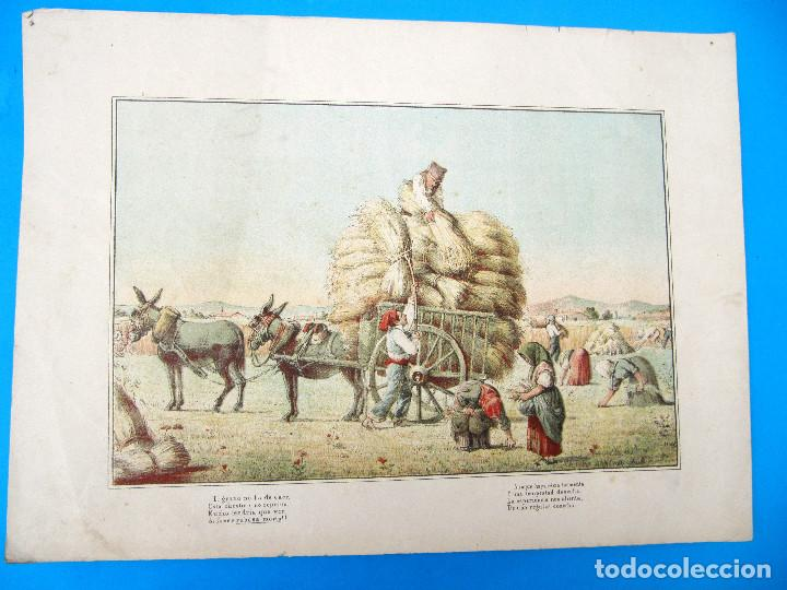 CARTEL RABASSAIRES RECOGIENDO LA COSECHA. CATALUNYA, CATALUÑA. S/F. (Arte - Cromolitografía)