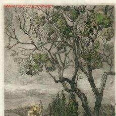 Arte: AGUAFUERTE COLOREADO CARTUJA DE MIRAFLORES ESC. CATALANA S. XX. Lote 13171248