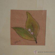 Arte: 2/ DIBUJO CARACOLILLO - TECNICA MIXTA. Lote 21259085
