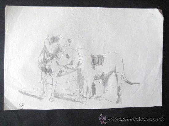 Dibujo A Lapiz Años 30 Perros Envio Gratis Kaufen
