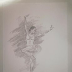Arte: DIBUJO LÁMINA A LÁPIZ. BAILARINA. 29.2X41.1 CM. Lote 128296371
