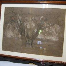 Arte: RAMON MARTI ALSINA (1826-1894). DIBUJO.. Lote 33807880