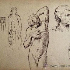 Arte: MAGISTRALES RETRATOS MIGUELANGELESCOS, EXCELENTE CALIDAD, TINTA SOBRE PAPEL, MEDIADOS DEL XIX. Lote 34916562